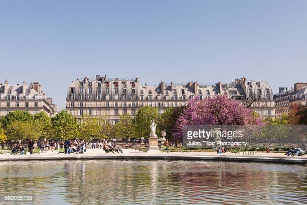 jardin des tuileries in paris, france. - louvre photos et images de collection