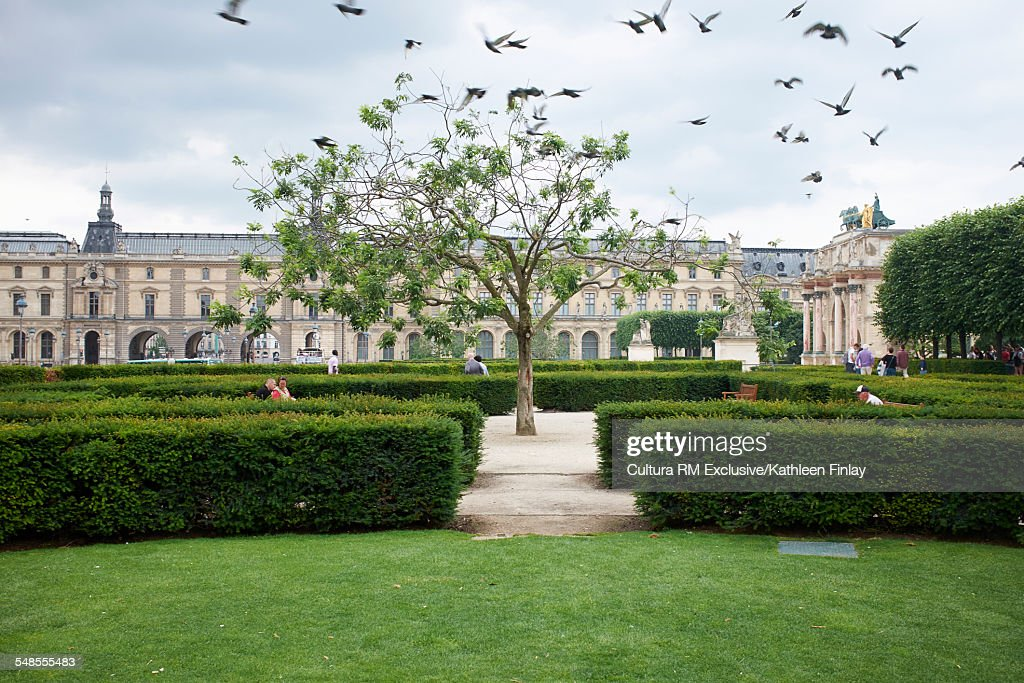 jardins des tuileries at the louvres museum paris france stock photo - Jardins Des Tuileries