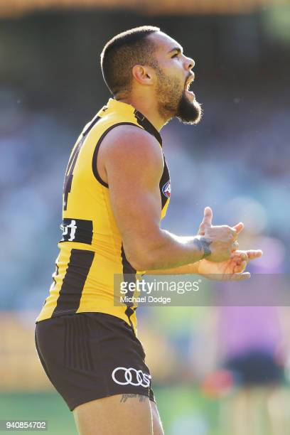 Jarman Impey of the Hawks celebrates a goal during the round two AFL match between the Geelong Cats and the Hawthorn Hawks at Melbourne Cricket...