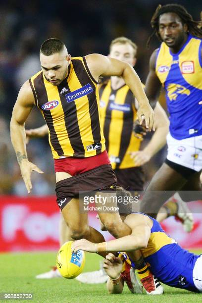 Jarman Impey of the Hawks gets tackled during the round 10 AFL match between the Hawthorn Hawks and the West Coast Eagles at Etihad Stadium on May 27...