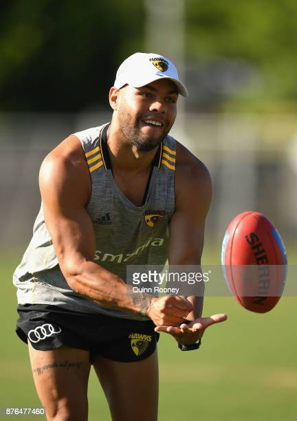 Jarman Impey of the Hawks handballs during a Hawthorn Hawks AFL preseason training session at Waverley Park on November 20 2017 in Melbourne Australia