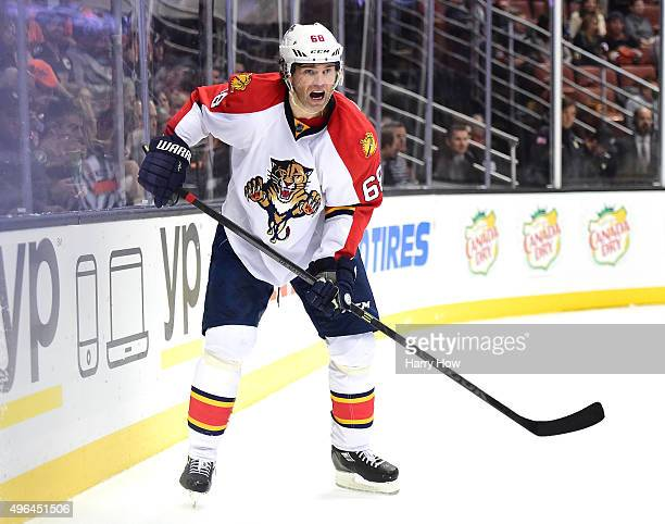 Jaromir Jagr of the Florida Panthers looks for a pass during the game against the Anaheim Ducks at Honda Center on November 4, 2015 in Anaheim,...