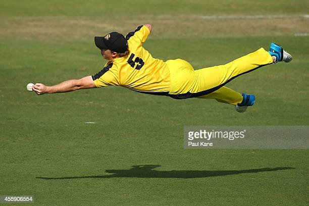 Jaron Morgan of the WA XI dives for a catch during the One Day tour match between the Western Australia XI and Afghanistan at the WACA on September...