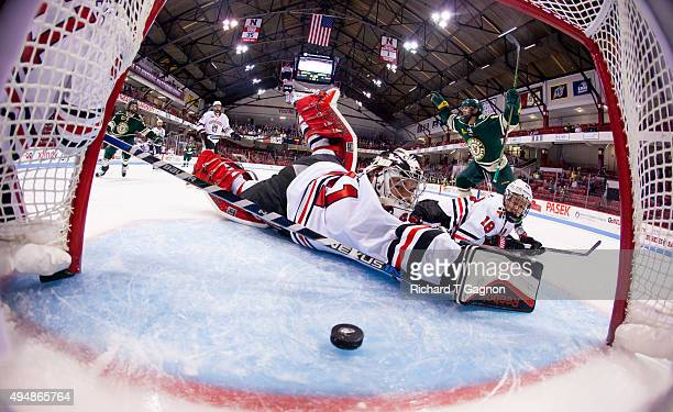 Jarrid Privitera of the Vermont Catamounts celebrates his goal as Ryan Ruck and John Stevens both of the Northeastern Huskies watch as the puck...