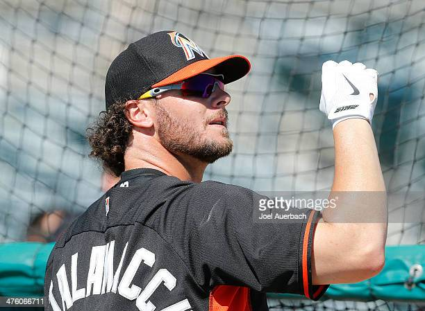 Jarrod Saltalamacchia of the Miami Marlins stands next to the batting cage prior to the game against the St Louis Cardinals during a spring training...