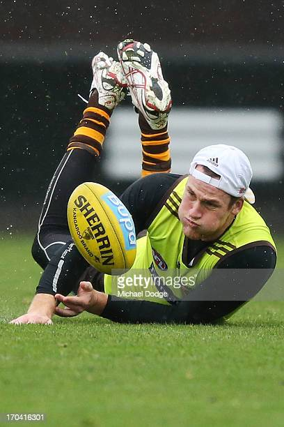 Jarryd Roughead dives for the ball during a Hawthorn Hawks AFL training session at Waverley Park on June 13 2013 in Melbourne Australia