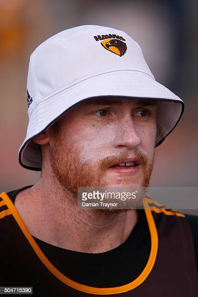 Jarryd Roughead looks on during a Hawthorn Hawks AFL preseason training session at Waverley Park on January 13 2016 in Melbourne Australia