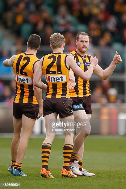 Jarryd Roughead of the Hawks celebrates a goal during the round 22 AFL match between the Hawthorn Hawks and the Brisbane Lions at Aurora Stadium on...