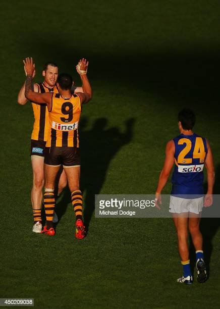 Jarryd Roughead of the Hawks celebrates a goal with Shaun Burgoyne of the Hawks during the round 12 AFL match between the Hawthorn Hawks and the West...
