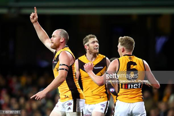 Jarryd Roughead of the Hawks celebrates kicking a goal during the round 14 AFL match between the Sydney Swans and the Hawthorn Hawks at Sydney...
