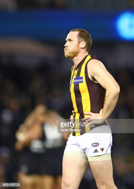 Jarryd Roughead of the Hawks reacts at the final siren as the Blues celebrate winning the round 22 AFL match between the Carlton Blues and the...