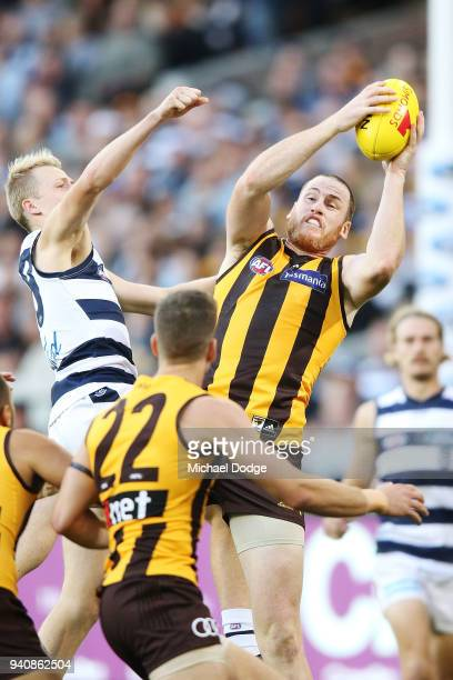 Jarryd Roughed of the Hawks marks the ball against Zach Guthrie of the Cats during the round two AFL match between the Geelong Cats and the Hawthorn...