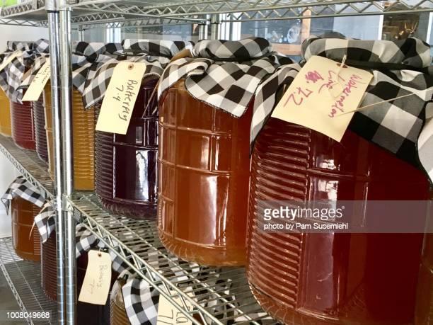 Jars of Fermenting Kombucha