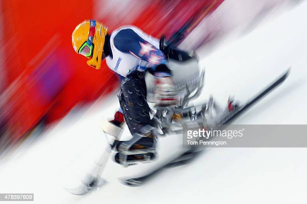 Jasmin Bambur of USA competes in the Men's Slalom 1st Run Sitting during day six of Sochi 2014 Paralympic Winter Games at Rosa Khutor Alpine Center...
