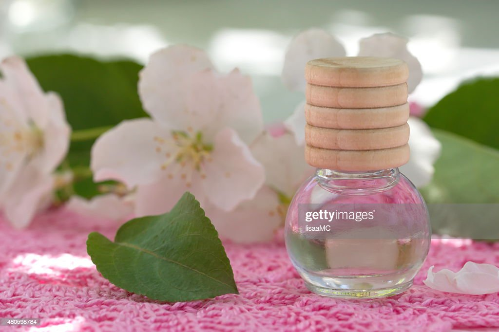 Jasmine Essential Oil : Stock Photo
