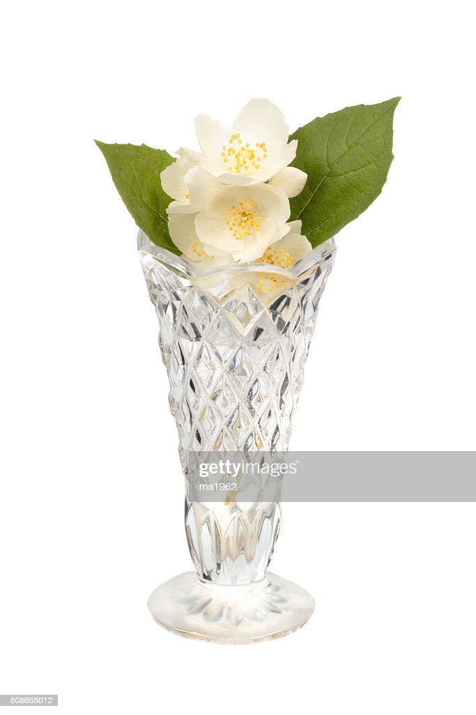 Jasmine in the crystal vase : Stock Photo