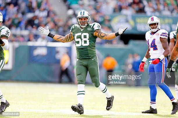 Jason Babin of the New York Jets in action against the Buffalo Bills on October 26 2014 at MetLife Stadium in East Rutherford New Jersey The Bills...