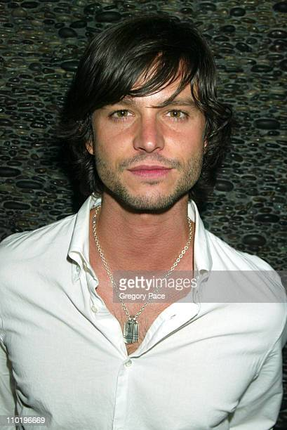 Jason Behr during 3rd Annual Tribeca Film Festival Showtime Party at Nobu in New York City New York United States