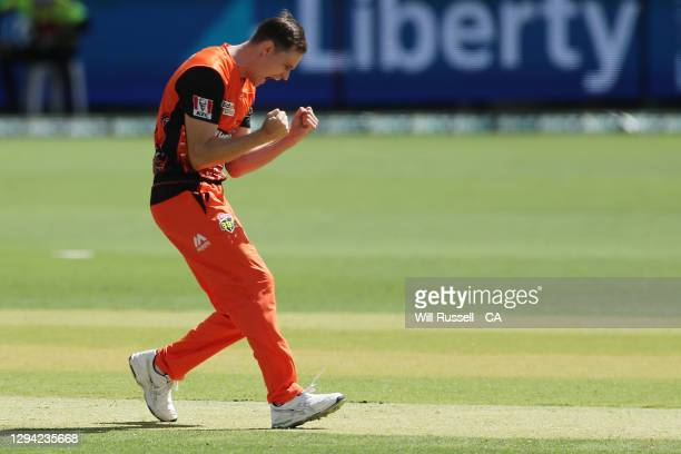 Jason Behrendorff of the Scorchers celebrates after taking the wicket of Beau Webster of the Renegades during the Big Bash League match between the...