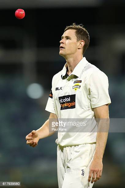 Jason Behrendorff of the Warriors walks back to his bowling mark during day one of the Sheffield Shield match between Western Australia and South...