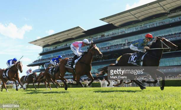 Jason Collett on Serene Miss wins race 4 the Provincial Championships Final during day two of The Championships as part of Sydney Racing at Royal...