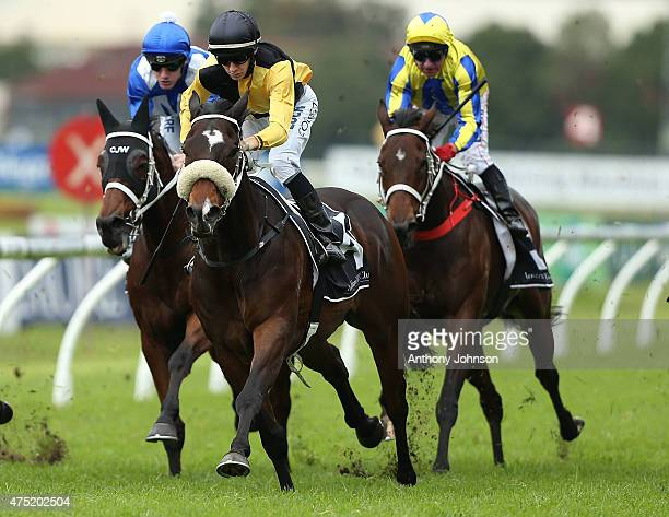 Jason Collett rides You'll Never to win race 5 The Octagonal Handicap during Sydney Racing at Rosehill Gardens on May 30 2015 in Sydney Australia
