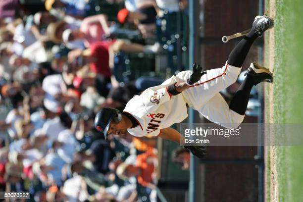 Jason Ellison of the San Francisco Giants bats during the game against the Cleveland Indians at SBC Park on June 12 2005 in San Francisco California...