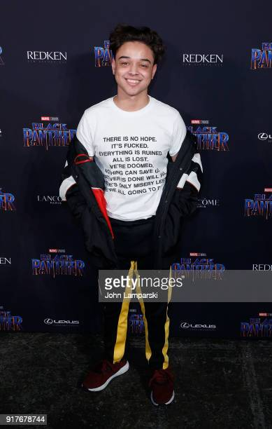 Jason Genao attends Marvel Studios Presents Black Panther Welcome To Wakanda during February 2018 New York Fashion Week The Shows at Industria...