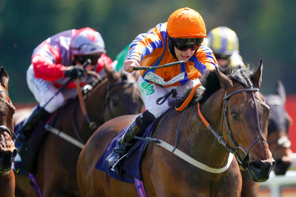 GBR: Chester Races