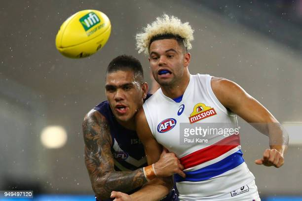 Jason Johannisen of the Bulldogs handballs against Michael Walters of the Dockers during the round five AFL match between the Fremantle Dockers and...