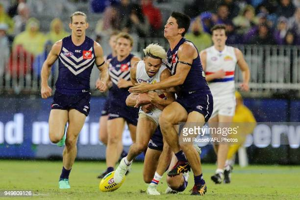 Jason Johannisen of the Bulldogs is tackled by Aaron Sandilands and Bailey Banfield of the Dockers during the round five AFL match between the...