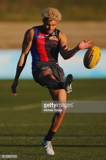 Jason Johannisen of the Bulldogs kicks the ball during a Western Bulldogs AFL training session at Whitten Oval on July 11 2017 in Melbourne Australia