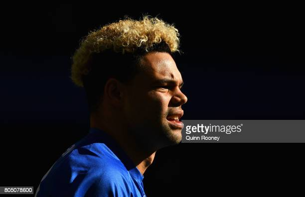 Jason Johannisen of the Bulldogs looks on during the round 15 AFL match between the Western Bulldogs and the West Coast Eagles at Etihad Stadium on...