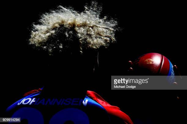 Jason Johannisen of the Bulldogs marks the ball during the JLT Community Series AFL match between Collingwood Magpies and the Western Bulldogs at Ted...