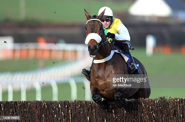 Jason Maguire riding Ballabriggs during the Totopool.comPremier Steeple Chase at Kelso racecourse on March 03, 2012 in Kelso, United Kingdom.