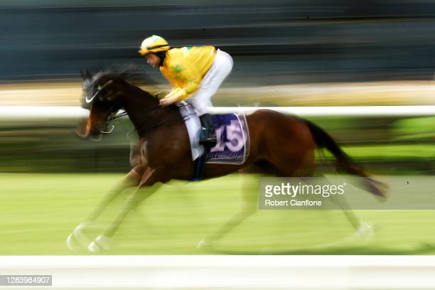 Jason Maskiell riding Lord Markel makes their way to the barriers ahead of race seven the Melbourne Cup Carnival Country Final during 2020 Kennedy...