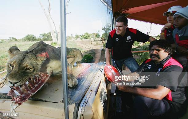 Jason McCartney and Derek Kickett help promote an upcoming AFL tour to South Africa by visiting Werribee Zoo February 14 2006 in Melbourne Australia