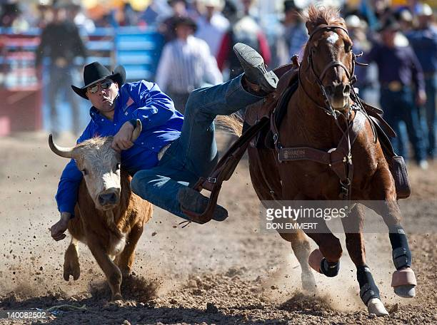 Jason Miller participates in the steer wrestling competition at the Tucson Rodeo La Fiesta De Los Vaqueros February 26 2012 in Tucson Arizona AFP...