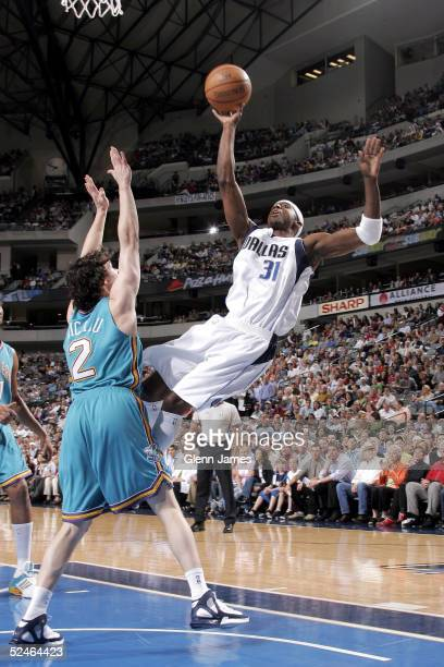 Jason Terry of the Dallas Mavericks shoots a tough layup against Dan Dickau of the New Orleans Hornets on March 21 2005 at the American Airlines...
