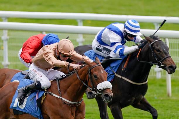 GBR: York Races