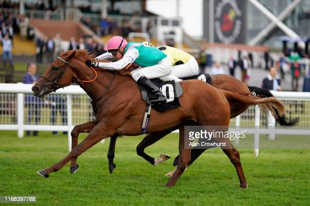 Jason Watson riding Quadrilateral win The Unibet EBF Maiden Stakes at Newbury Racecourse on August 16 2019 in Newbury England