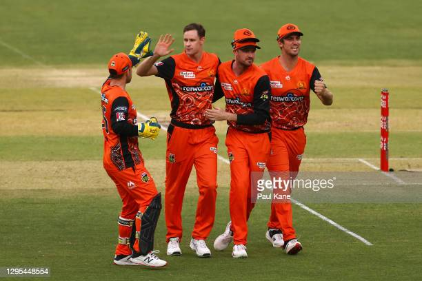 JasonBehrendorffof the Scorchers celebrates the wicket of Alex Hales of the Thunder during the Big Bash League match between the Perth Scorchers...