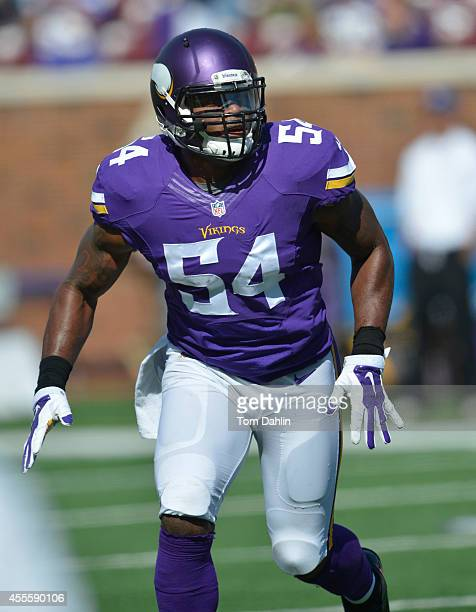 Jasper Brinkley of the Minnesota Vikings eyes the offense during an NFL game against the New England Patriots at TCF Bank Stadium on September 14...