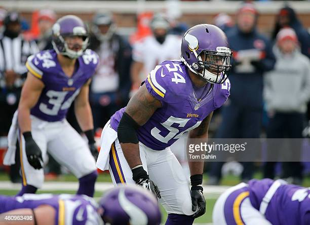 Jasper Brinkley of the Minnesota Vikings lines up during an NFL game against the Chicago Bears at TCF Stadium on December 28 2014 in Minneapolis...