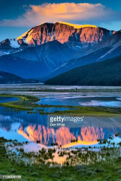 jasper national park in alberta canada - international landmark stock pictures, royalty-free photos & images