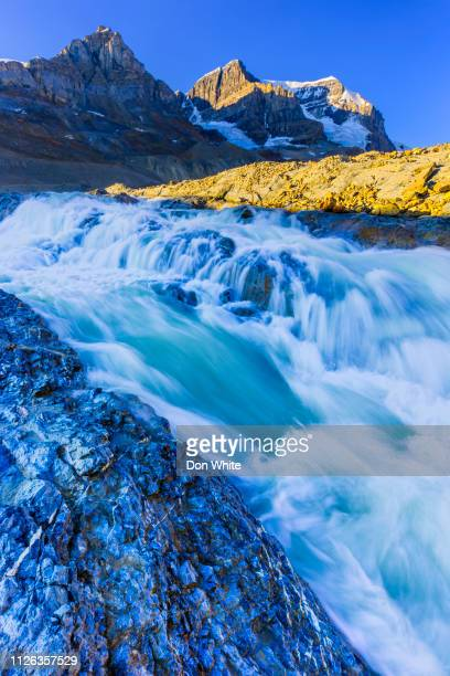 jasper national park in alberta canada - columbia icefield stock pictures, royalty-free photos & images