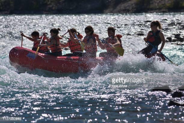 jasper-nationalpark in alberta, kanada - national team stock-fotos und bilder