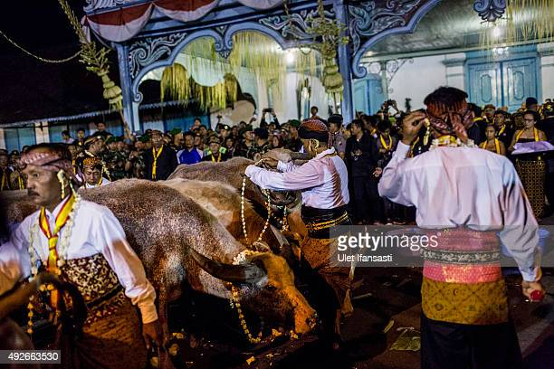 Javanese people walk during the traditional night carnival '1st Suro' marking the 1437th Islamic New Year celebrations at Kasunanan Palace on October...