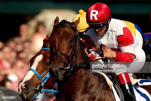 Javier Castellano rides prerace favorite Bobby's Kitchen down the front stretch during the Toyota Blue Grass Stakes at Keeneland Race Course on April...