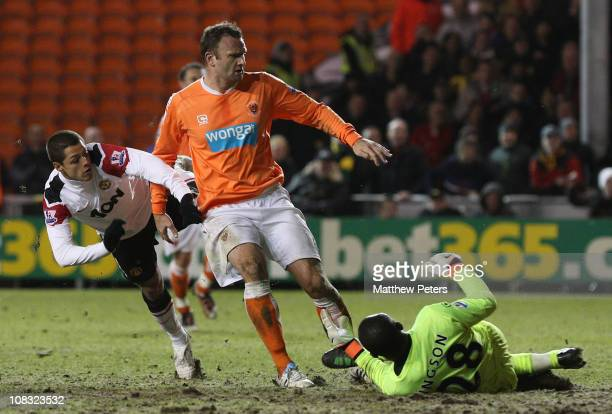 Javier 'Chicharito' Hernandez of Manchester United scores their second goal during the Barclays Premier League match between Blackpool and Manchester...